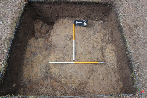 Here's the trench with the features excavated - possible pit/posthole in the top-left corner